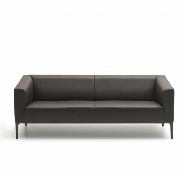 Sofa DS-161
